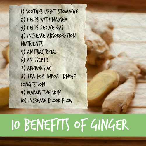 Ginger Newtrition benefits Ginger